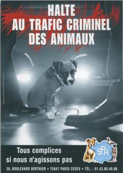Trafic animaux