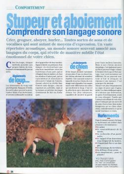 Article Chiens 2000 n°302